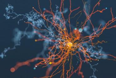 Обучение искусственных нейронных систем