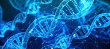 Генетические алгоритмы