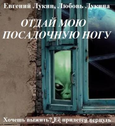 Система вопросов к анализу рассказа Е. и Л. Лукиных «Отдай мою посадочную ногу»